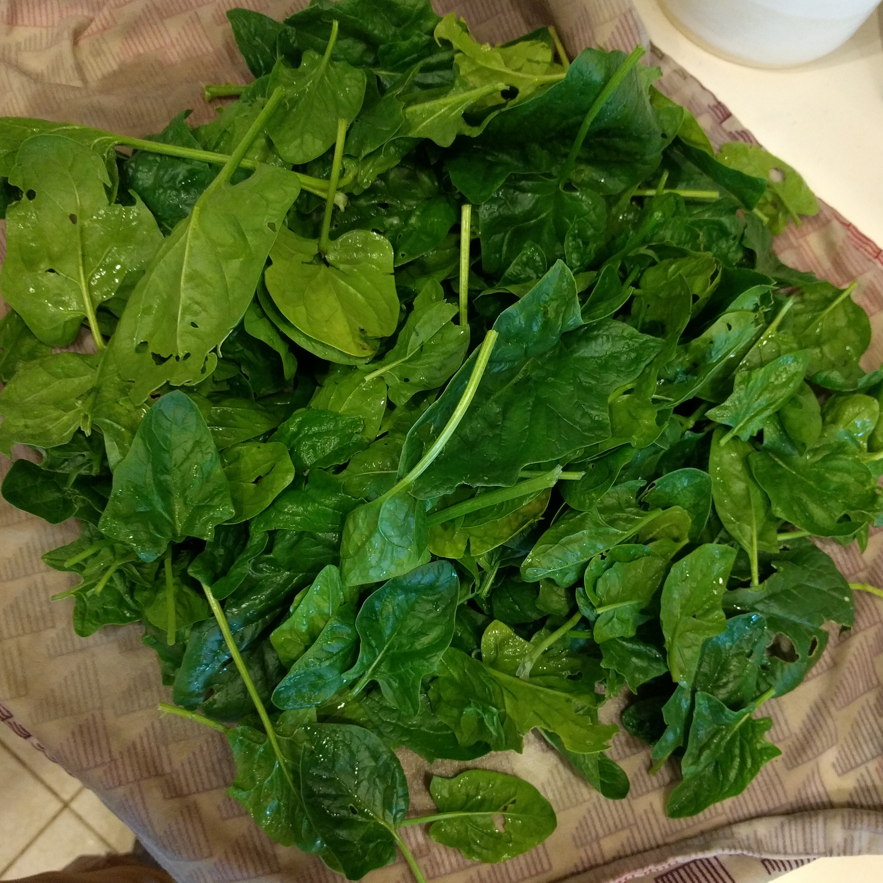 A pile of cleaned spinach.